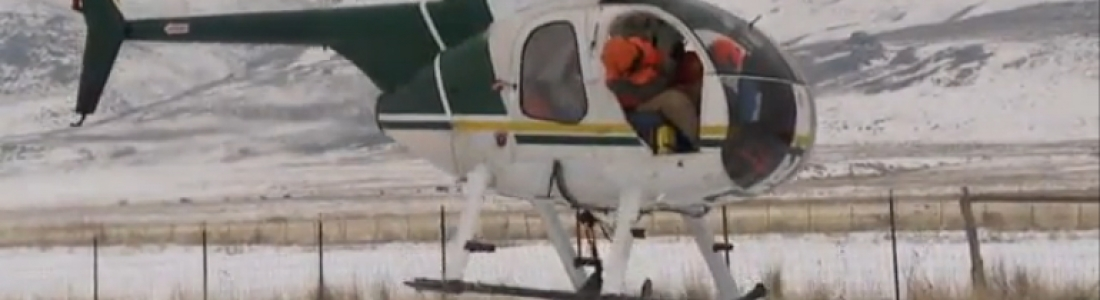 Dragonfly Aviation helps Mule Deer Relocation in Utah