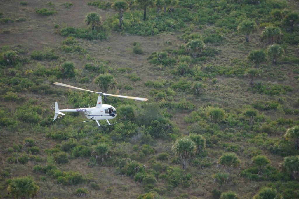dragonfly aviation loredo texas